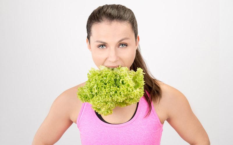 Salat-Welt, die ist so bunt!